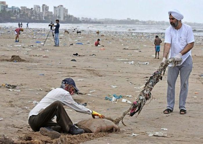 People Removed Five Thousand Tons Of Waste From A Beach In India