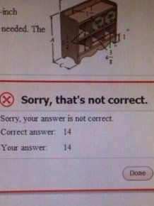 Schoolkids That Prove Logic Is A Very Relative Concept