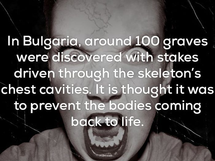 Disturbing Facts That Will Chill You Right To The Bone