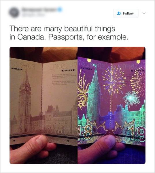 Here's Why Everyone Loves Canada