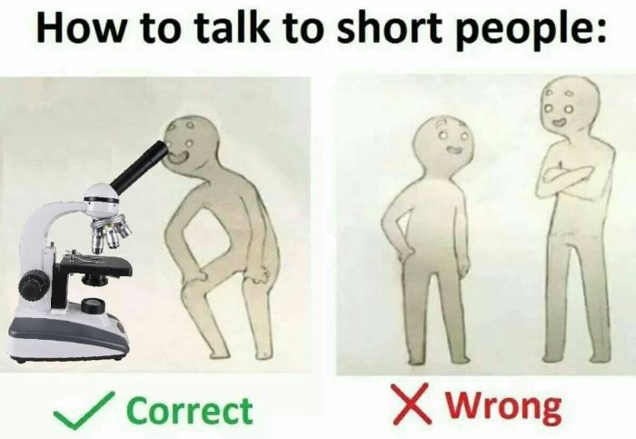 Everything You Need To Know About Talking To Short People