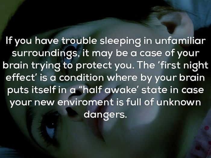 Creepy Facts That Will Give You The Coldest Of Chills