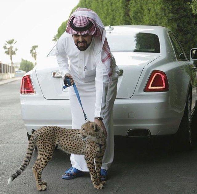 Rich Arabs Love To Spend Money