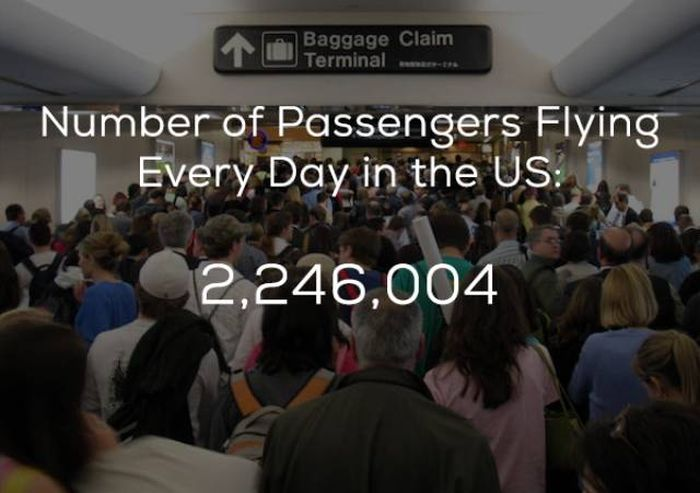 Every Interesting Fact You Need To Know About Air Travel
