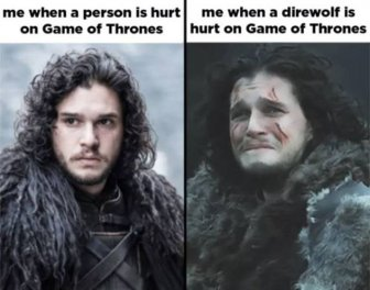 Game Of Thrones Memes Have Returned