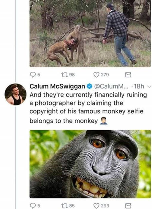 Guy Uses Twitter To Call Out PETA