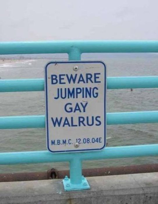 Don't Try To Explain These Signs, Just Enjoy Them
