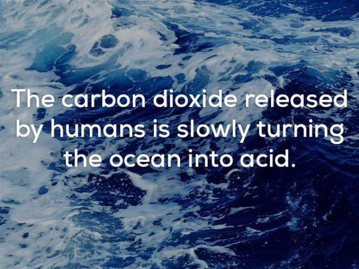 Interesting Random Facts