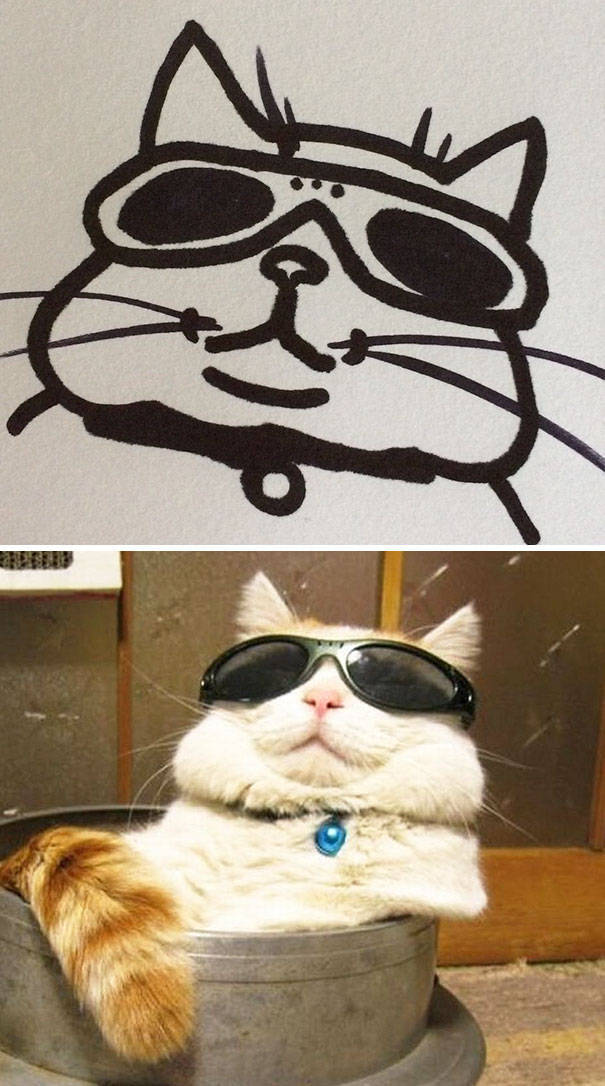 Cat Drawings That Are Actually Pretty Accurate