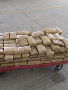 Customs Officers Seize 300 Pounds Of Marijuana