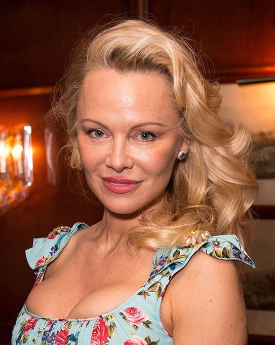 How Pamela Andersons Appearance Has Changed Over The -1582