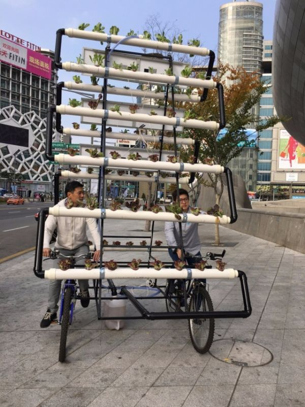 Mobile Garden That Can Be Transported Anywhere