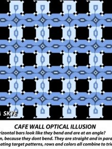 Optical Illusion Makes Parallel Lines Look Slanted