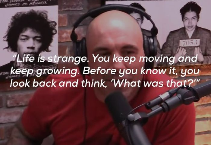Joe Rogan Definitely Has A Way With Words