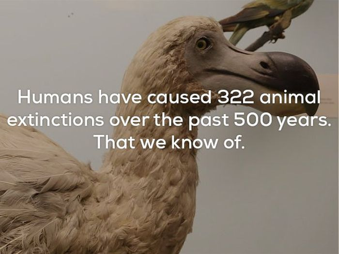 Disturbing Facts That Will Chill You To Your Very Core