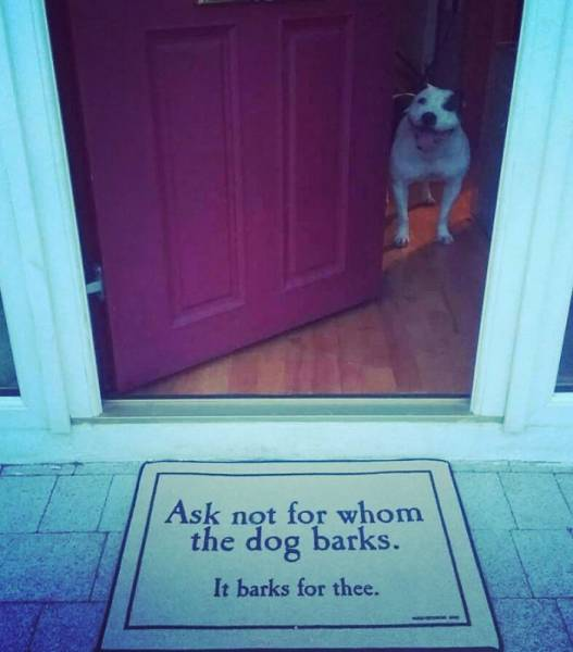Houses With Hilariously Creative Doormats