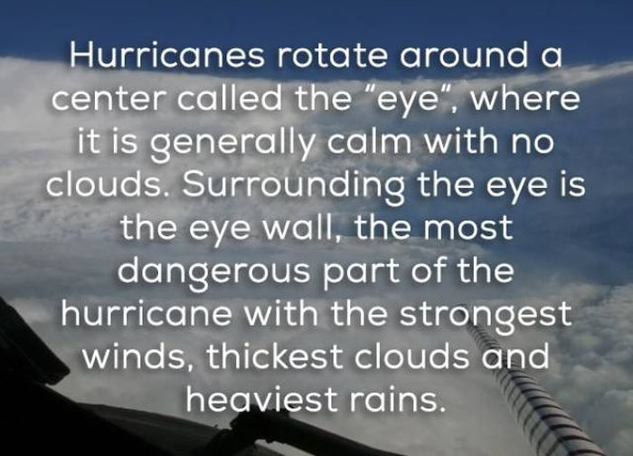 Facts That Will Help You Learn More About Hurricanes