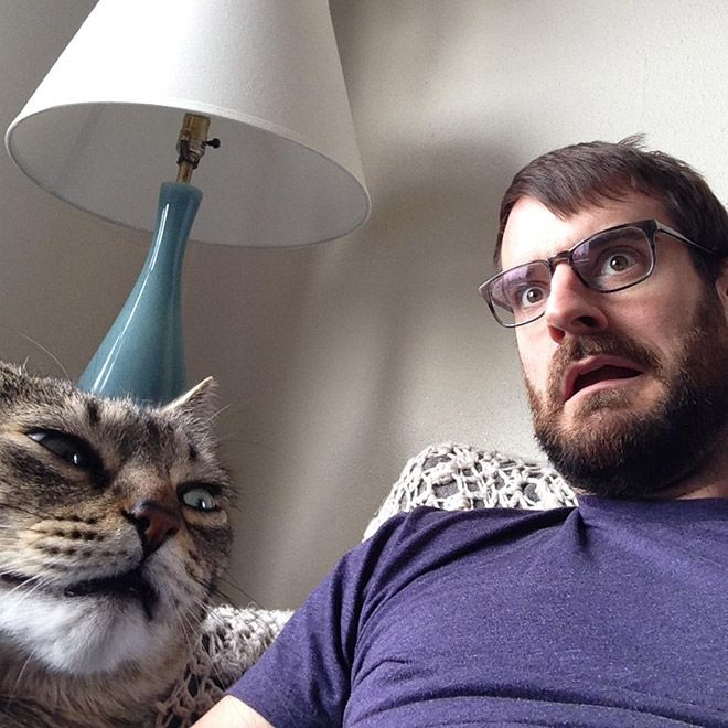 Cats That Didn't Want To Be In Stupid Selfies