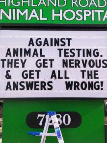 Brilliant Vet Signs