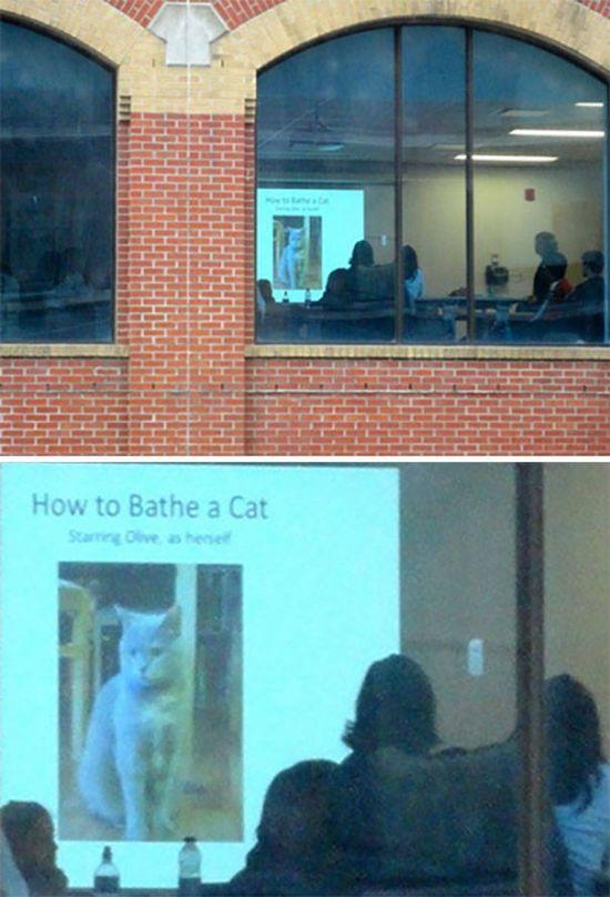 Unusual Presentations