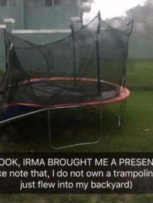 Florida Doesn't Lose Their Sense Of Humor