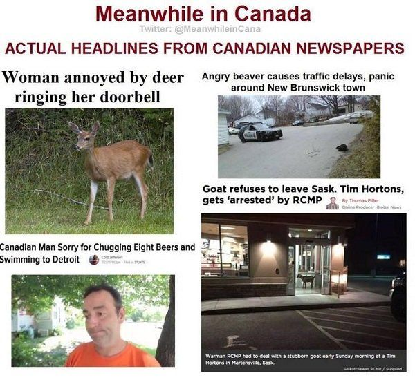 Meanwhile In Canada, part 2