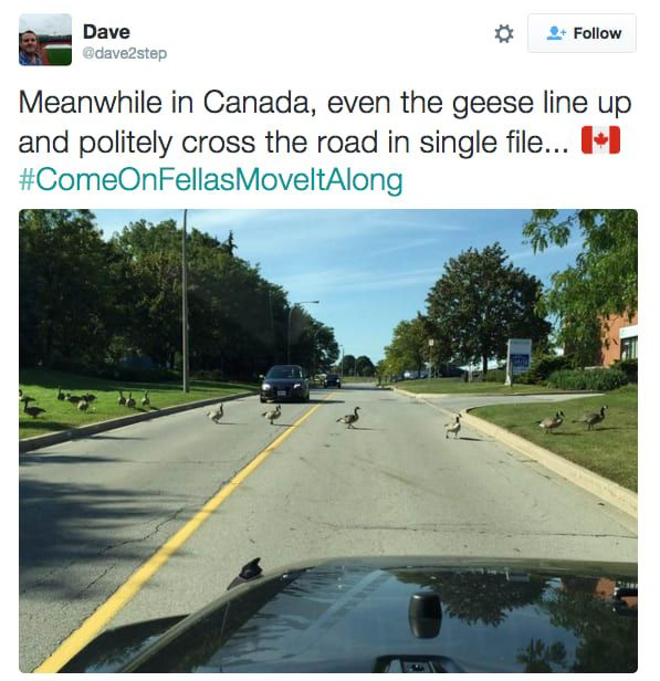 Meanwhile, in Canada, part 3