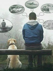 When A Picture Says More Than Just A Thousand Words