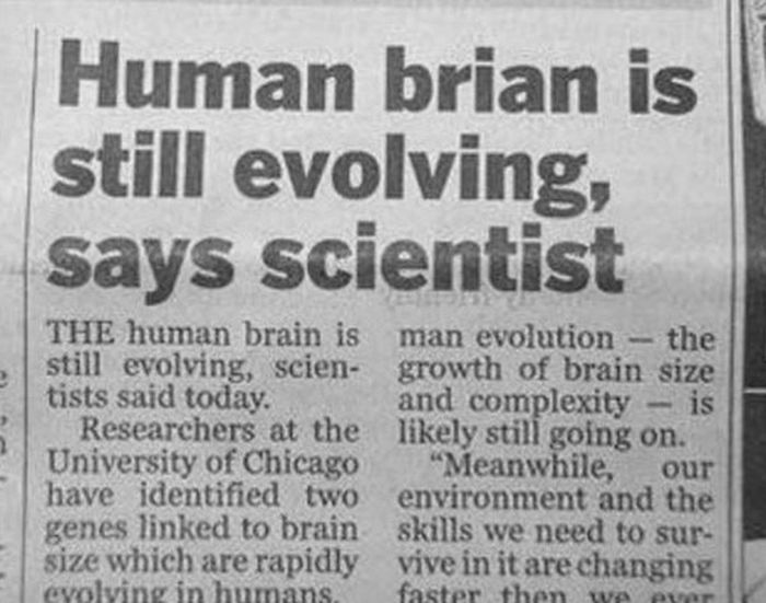 Incredible Newspaper Headlines