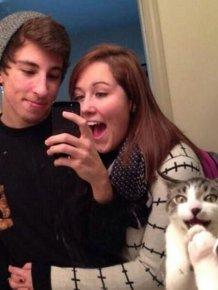 Cats Photobomb Photos