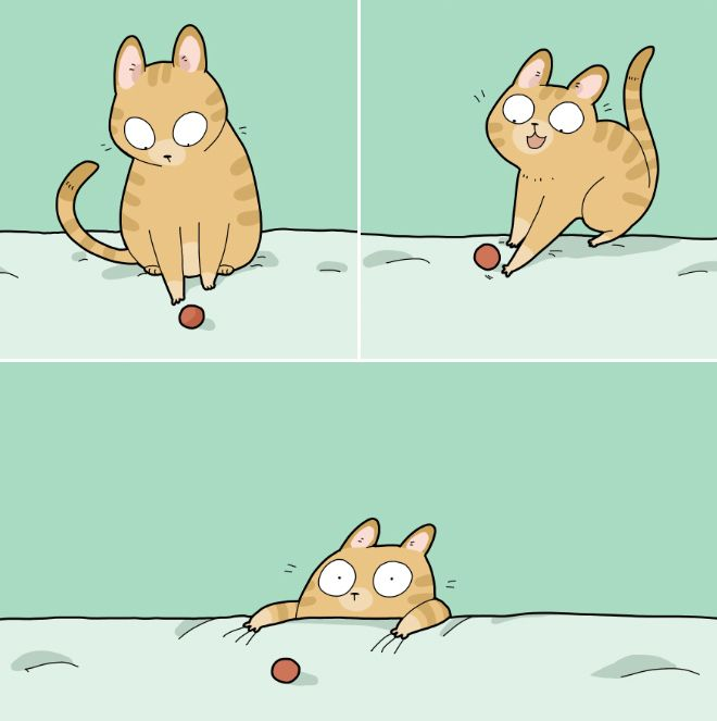 The Daily Struggles of Living With a Cat
