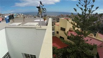 People Who Really Don't Care About Gravity
