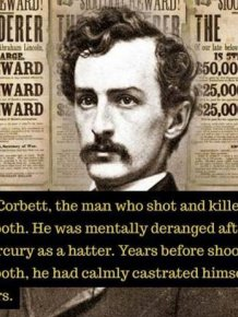 Historic Facts You've Never Heard Of