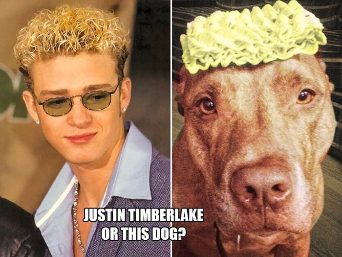 Who Wore It Better?, part 2