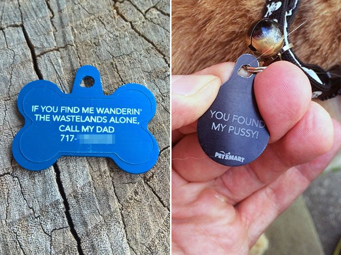 Funny Collar Tags For Pets