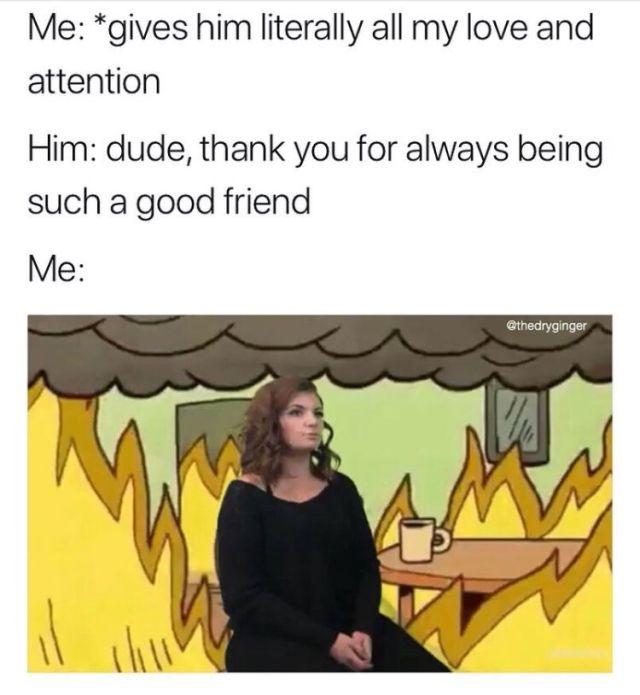 Fresh Memes