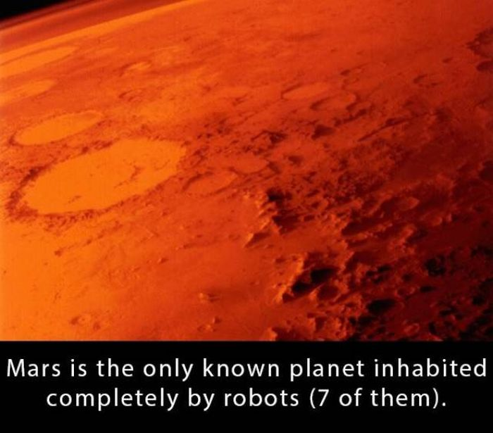Interesting Facts, part 19