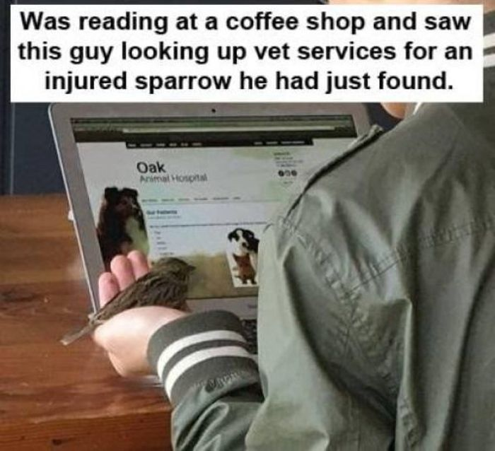People Are Awesome, part 6