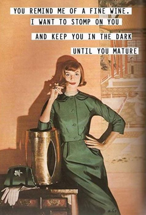 Funny 1950s Sarcastic Housewife Memes Fun