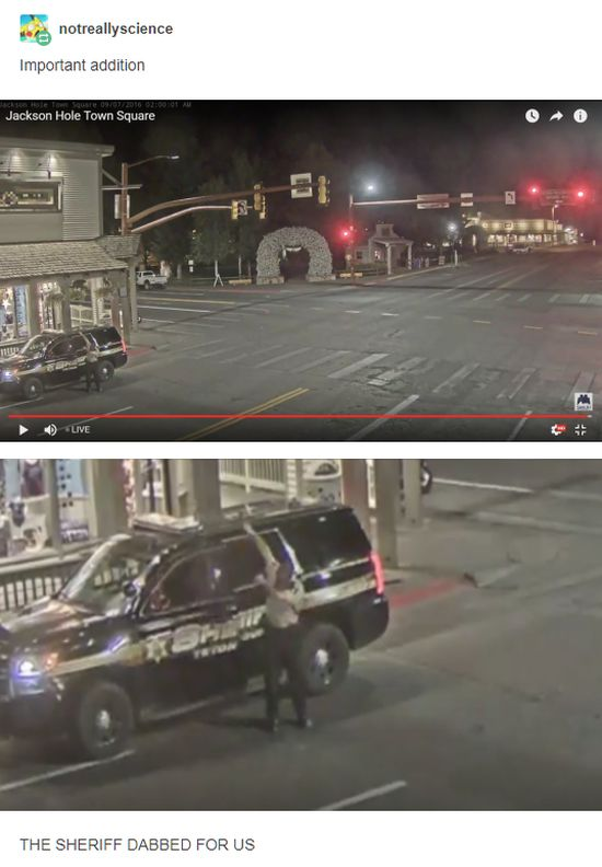 People Love Watching This Live Feed Of Jackson Hole's Town Square