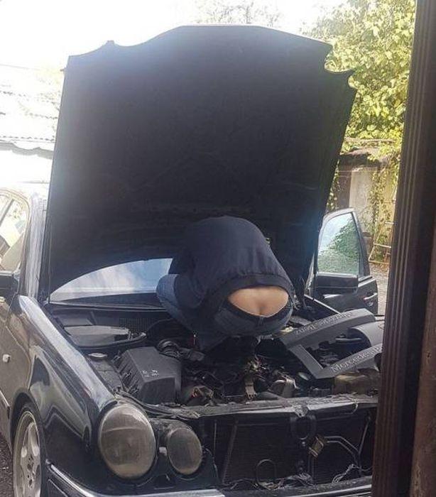 Found Under Cars' Hoods