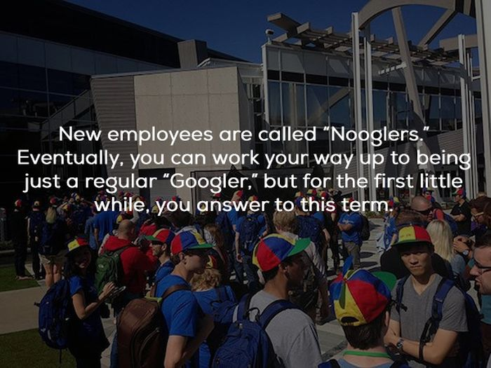 Facts About Google