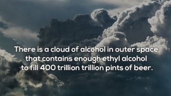 Facts About Booze