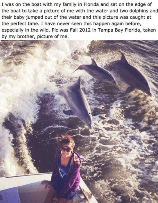 Unbelievable Photos