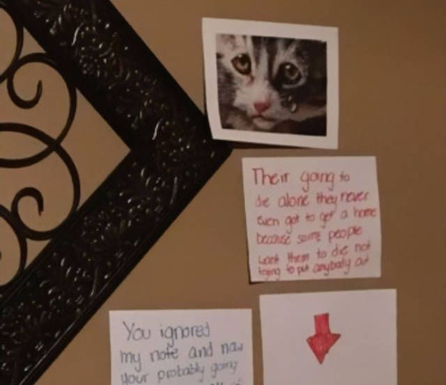 Daughter Finds A Very Creative Way To Get A Cat From Her Father