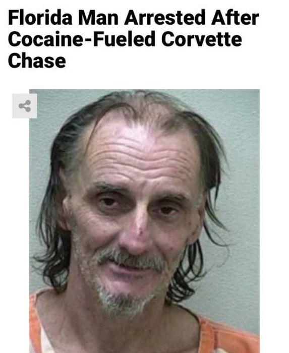 Florida Is A Very Weird Place, part 2