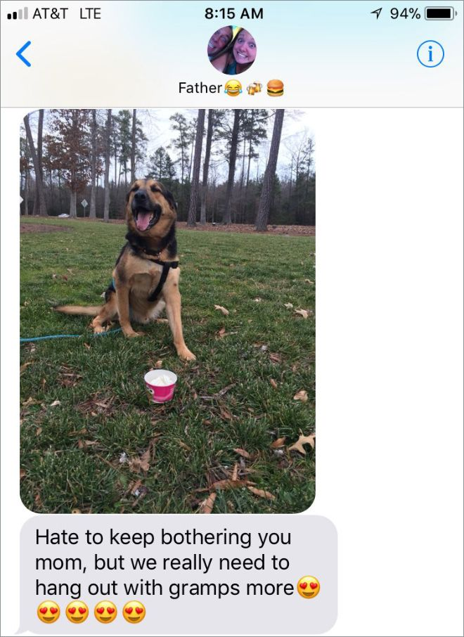 Woman Leaves Her Dog With Dad And Receives Great Photos