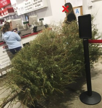 Woman Returns A Christmas Tree On January 4th, Here Is The Shop's Response