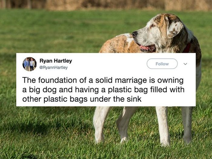People Who Are Totally Nailing This Whole Marriage Thing
