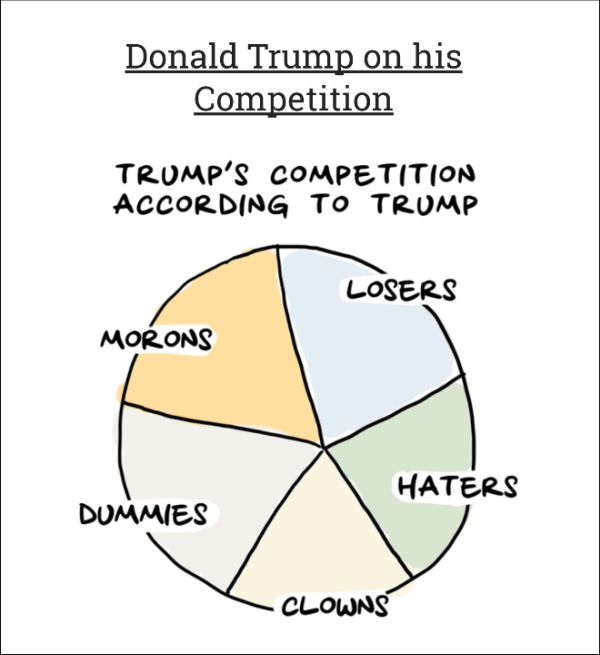 Charts That Show Where Trump Stands On The Issues